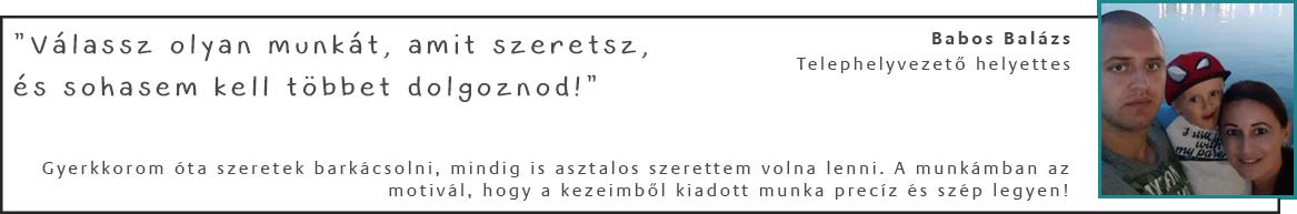 Babos Balázs - Telephelyvezető helyettes