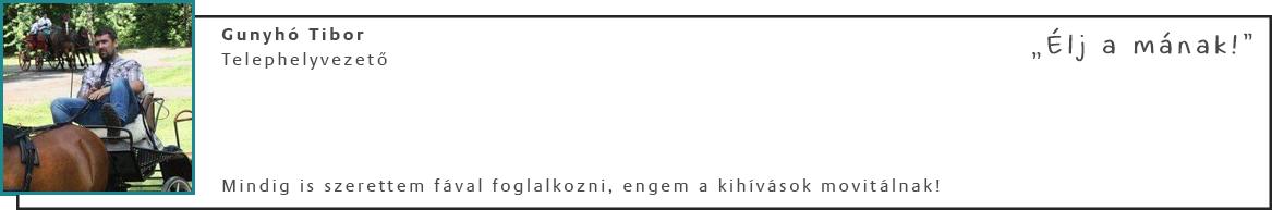 Gunyhó Tibor - Telephelyvezető